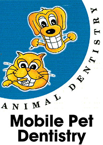 mobile pet dentistry sunshine coast queensland